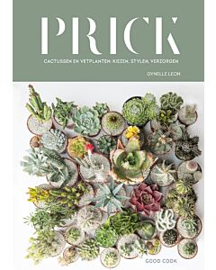Prick: cactussen en vetplanten: kiezen, stylen, verzorgen