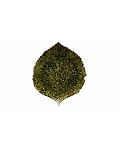 Costa Nova Riviera Hydrangea groot blad schaal 22 cm keramiek groen