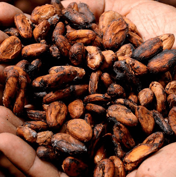 Chocolade blog